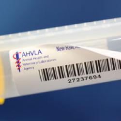 Removable-labels