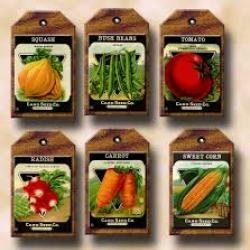 Seed Tags